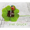 Midica card Petite Fleur, 9,2 x 7,7 cm, 12 pieces
